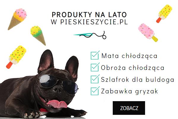 Produkty na lato